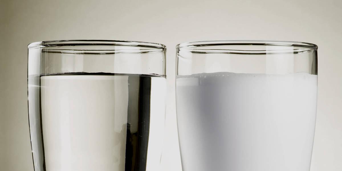 água ou leite whey protein