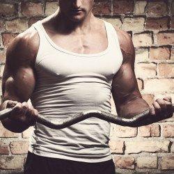 biceps treino braço
