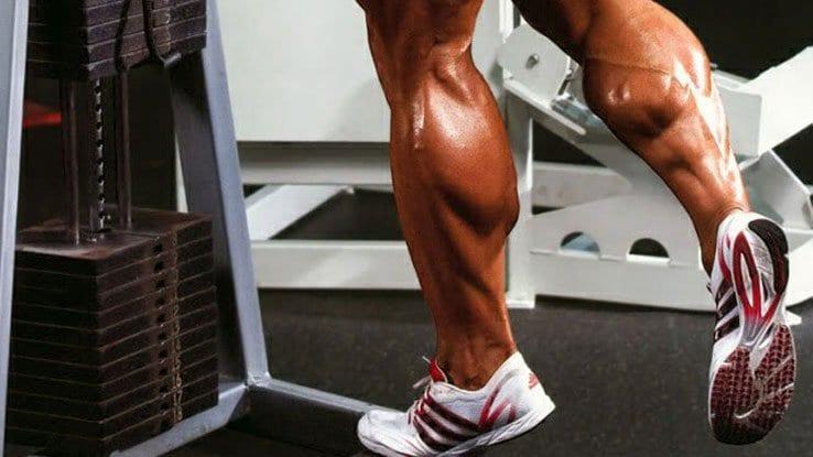 panturrilha batata da perna