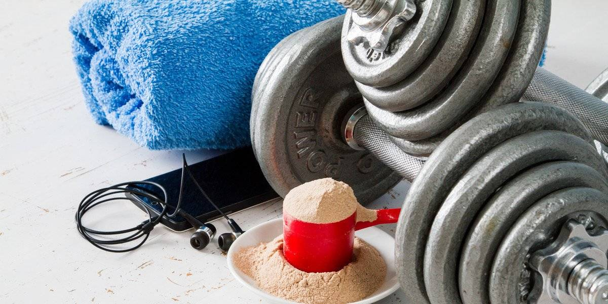 guia completo whey protein