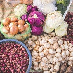 guia de alimentação com direito gastando pouco