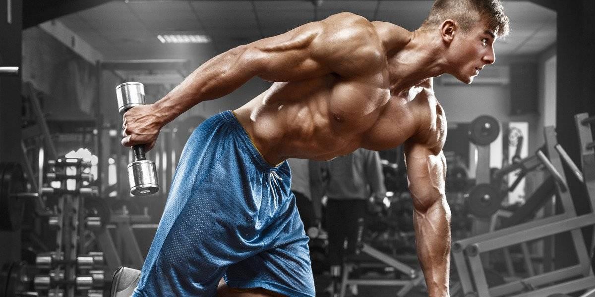 treino tríceps