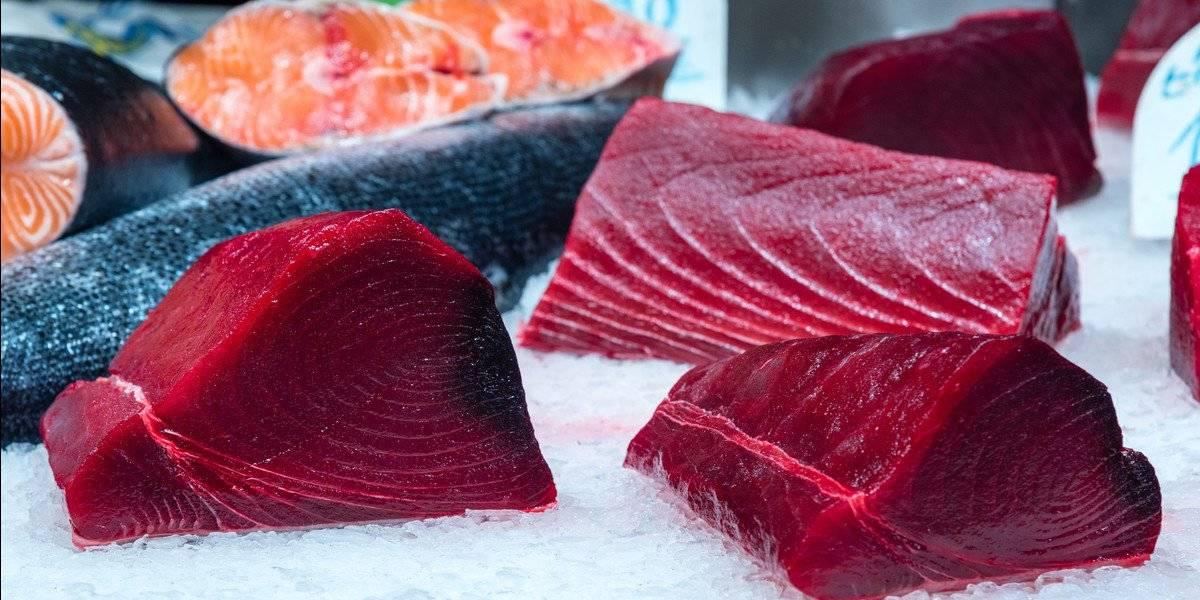 4 alimentos para substituir o frango - atum e salmao
