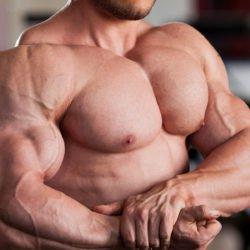 dicas fisiculturistas perna biceps triceps