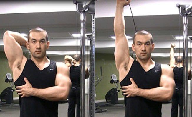 triceps-frances