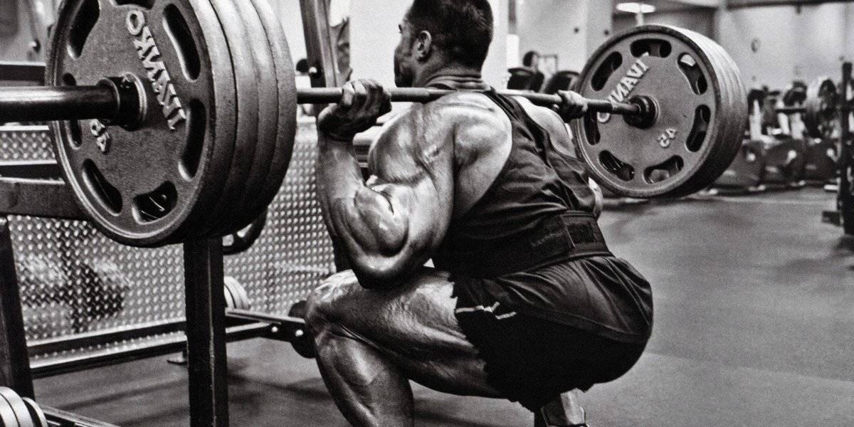 agachamento smolov músculo