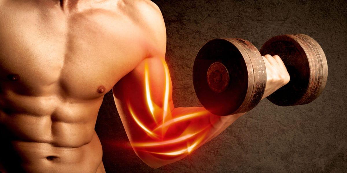 5 dicas combater dores pós-treino