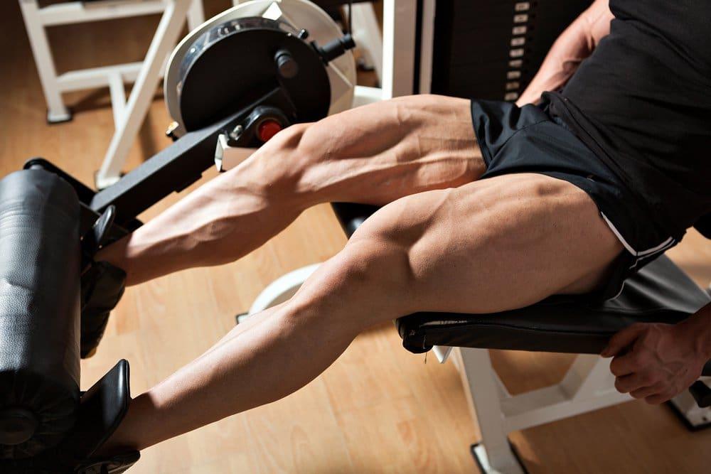 extensao de perna