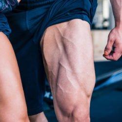 peso corporal pernas exercicios