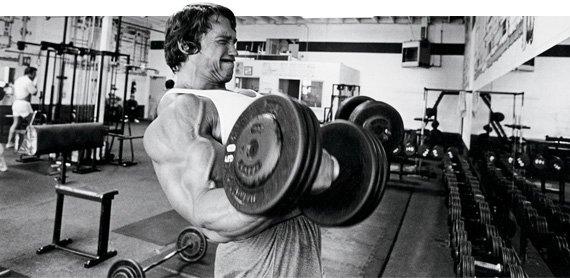 21s biceps arnold