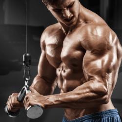 treino triceps