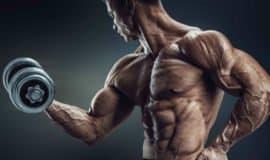 Guia do iniciante: tudo o que você precisa saber sobre musculação
