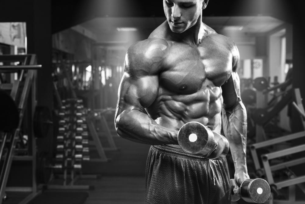 treino biceps tut
