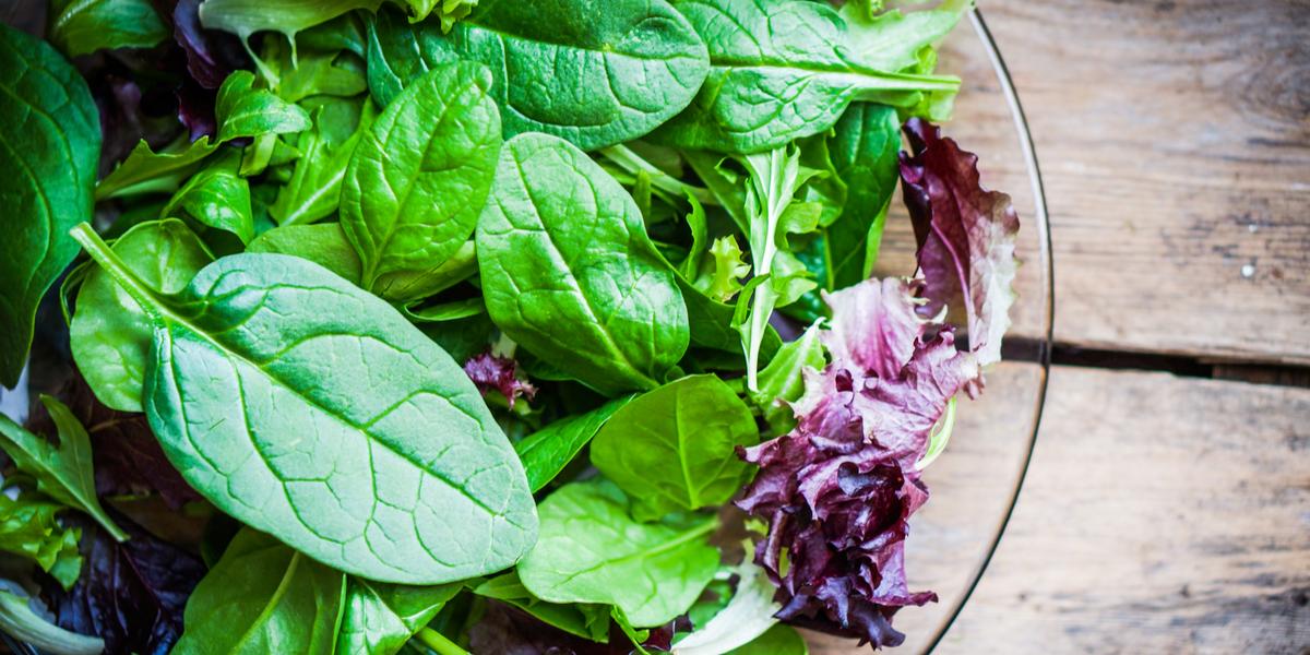 folhas verdes salada