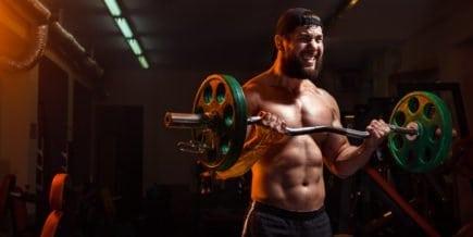 no pain no gain rosca biceps treino dor dores