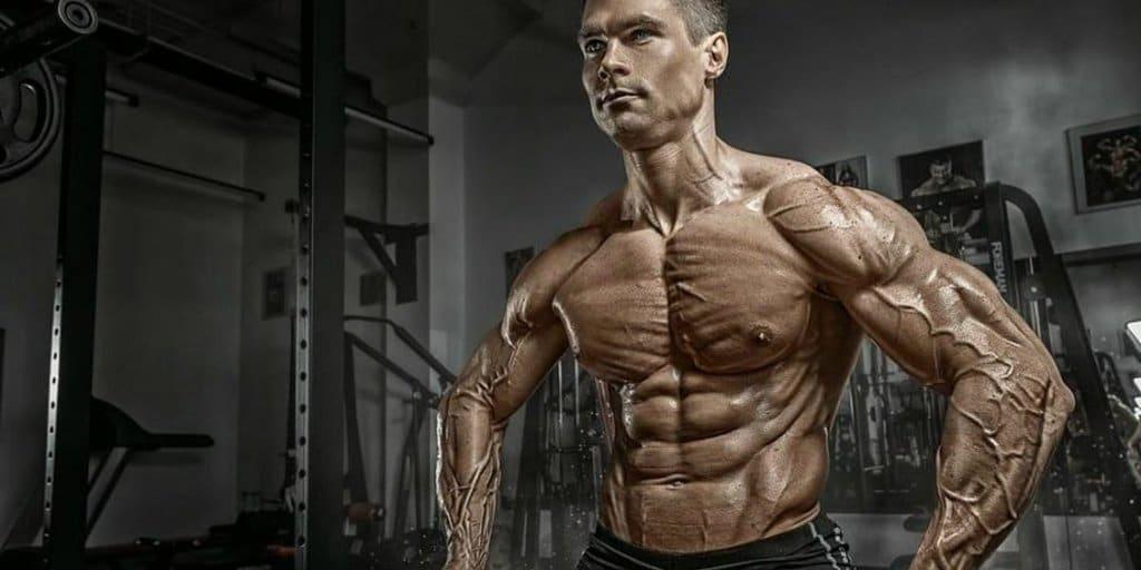 corpo vascularizado