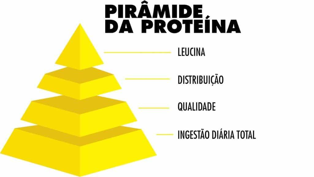 piramide da proteína