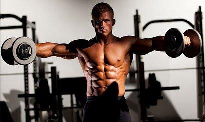 musculatura ombro