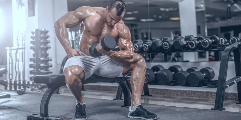 treino curto - biceps e triceps