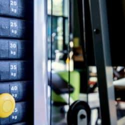 aparelhos máquinas exercícios