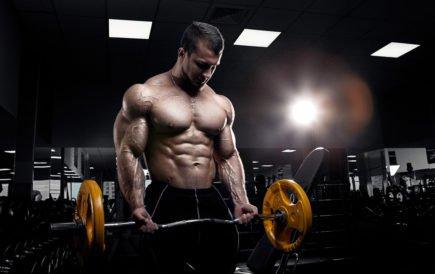 potencial muscular maximo - hipertrofia rosca direta