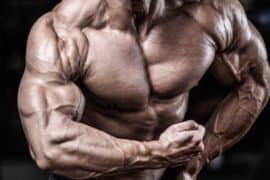 Bodybuilding: o que fazer para se tornar um bodybuilder de verdade