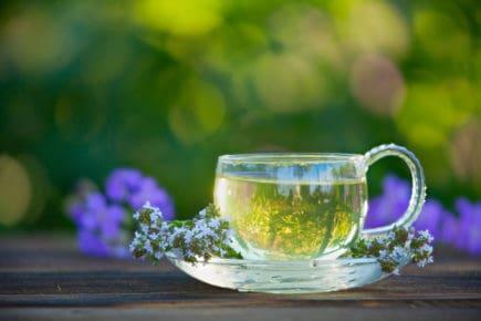 chá 9
