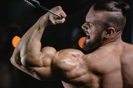 testosterona 6