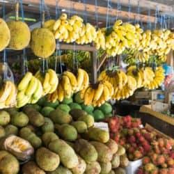 frutas brasileiras 1