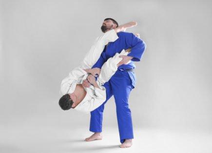 jiu-jitsu 2