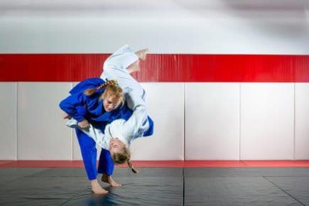 jiu-jitsu 3