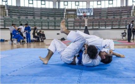 jiu-jitsu 4