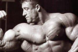 Heavy Duty: tudo sobre o treino insano dos gigantes do bodybuilding!