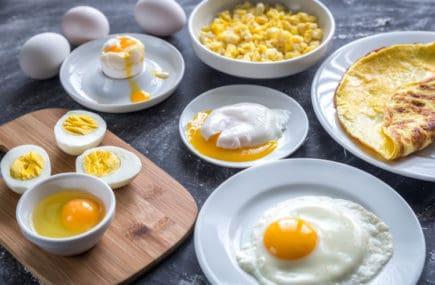 músculos - ovos