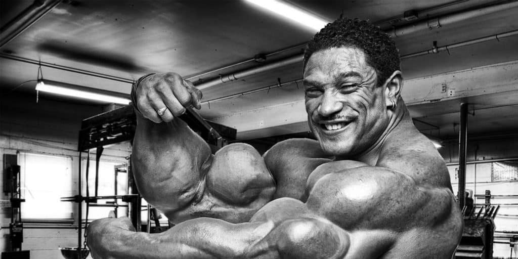 roelly 1