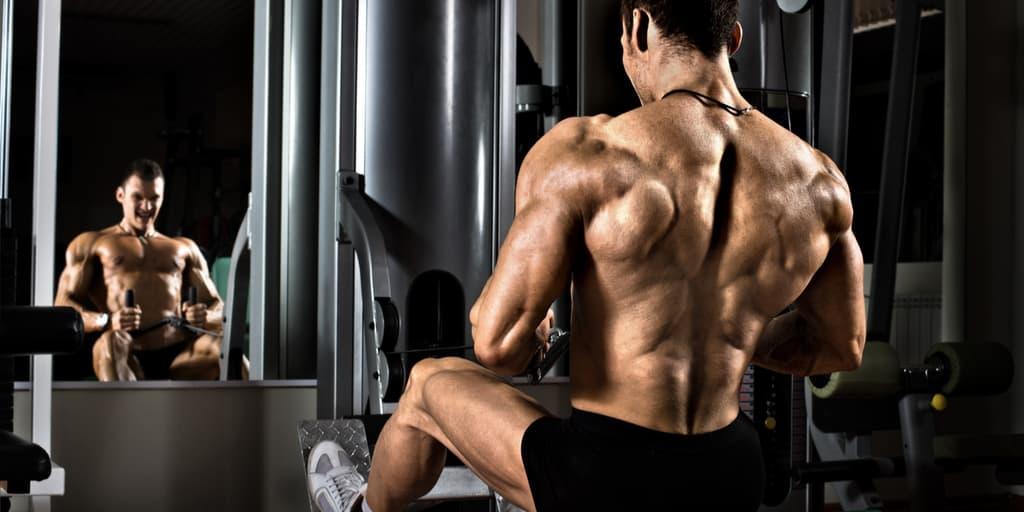 treino costas
